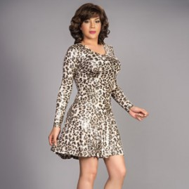 Classic Swing Dress - Leopard Print